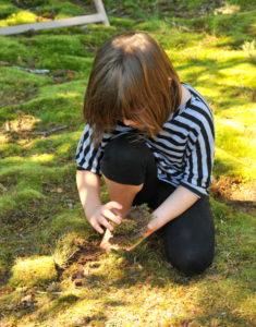 moss-gathering